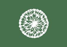 150613 Logo en elementen outlined transparant wit-02
